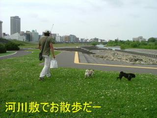 2006_0621kayo0018b.jpg