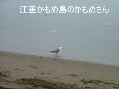 2006_0718camp0017b.jpg