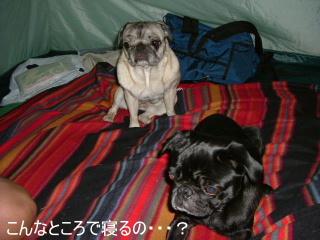 2006_0718camp0022b.jpg