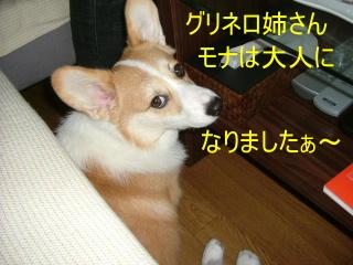 2006_0725mona0007b.jpg