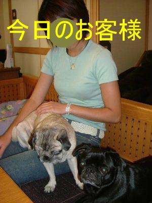 2006_0806asami0008b.jpg