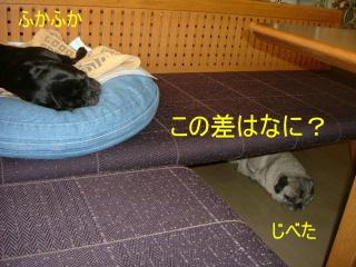 2006_0816sui0006b.jpg