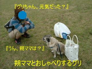 2006_0819saku0007.jpg