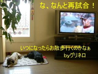 2006_0820koma0001.jpg
