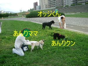 2006_0904kawa0005b.jpg