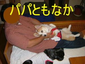 2006_0918mona0013b.jpg
