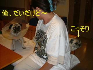 2006_1002cha0008.jpg