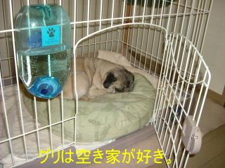 2006_1018rei0011.jpg