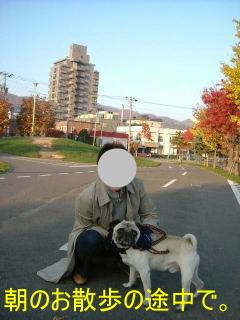 2006_1104hamadai0010b.jpg