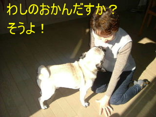 2006_1104hamadai0023b.jpg