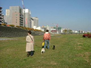 2006_1104hamadai0034.jpg