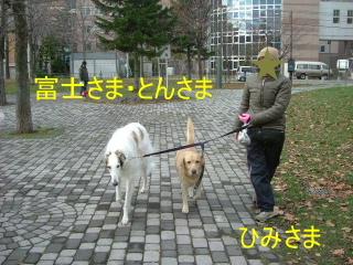 2006_1118sun0011.jpg