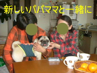 2006_1118sun0054b.jpg