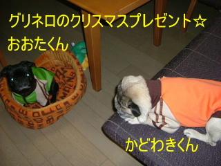2006_1206bp0023b.jpg