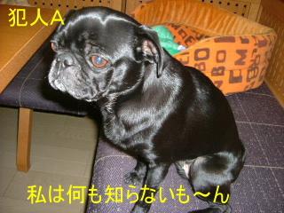 2006_1207jiken0002b.jpg