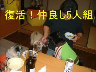2006_1209funa0012b.jpg