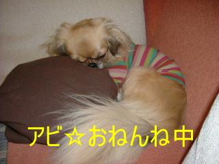 2006_1209funa0015.jpg