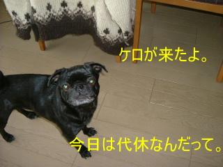 2006_1212kero0005b.jpg