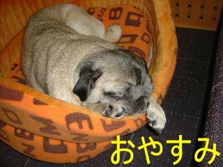 2006_1216guri0005b.jpg