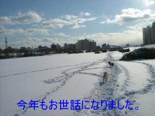 2006_1231misoka0009c.jpg