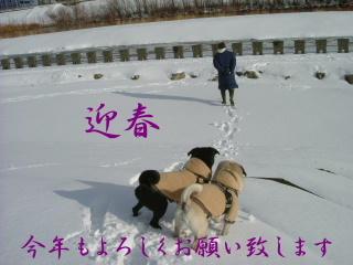 2007_0101ganjitu0007b.jpg