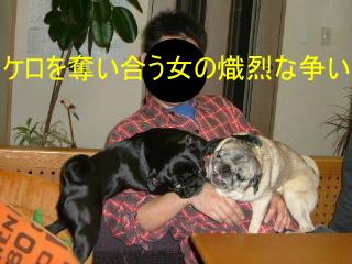 2007_0212sund0014b.jpg