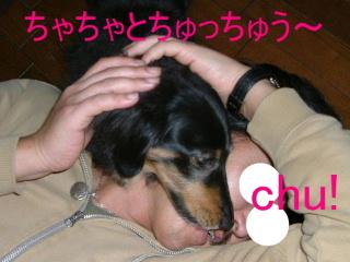 2007_0222cyacya0016b.jpg