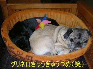 2007_0222urimono0003b.jpg