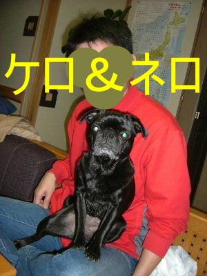 2007_0226furima0017.jpg