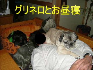 2007_0301norduno0022b.jpg