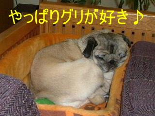 2007_0413onsen0055b.jpg