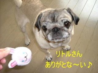 2007_0414rito0024b.jpg