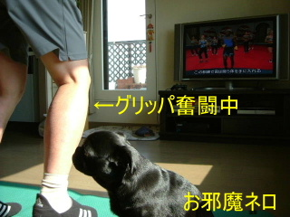 2007_0515hana0017b.jpg