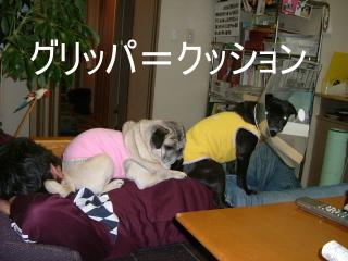2007_0520sun0002.jpg