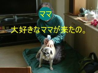 2007_0529mama0001b.jpg