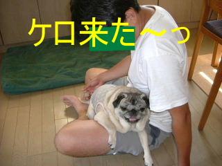 2007_0609pichi0011.jpg