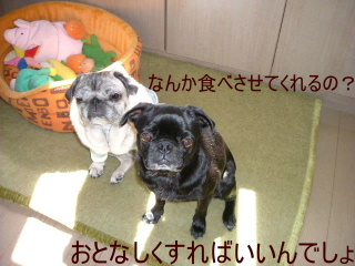 2007_0710ohisa0009.jpg