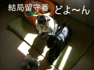 2007_0710ohisa0012.jpg