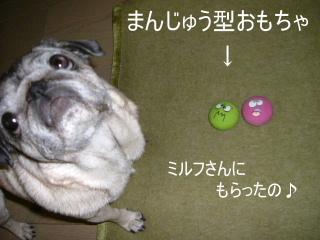 2007_0712ame0021.jpg