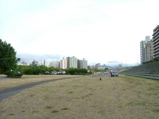 2007_0719mugicyoko0004.jpg