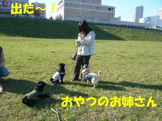 2007_1104netoru0014.jpg