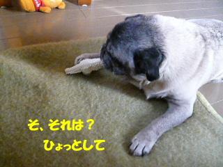 2007_1226buz0002b.jpg