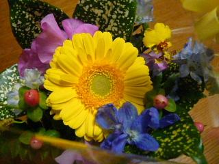 2008_0127cafe0012.jpg