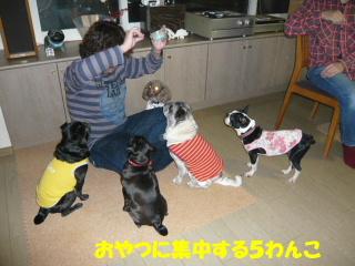 2008_0217jij0011b.jpg