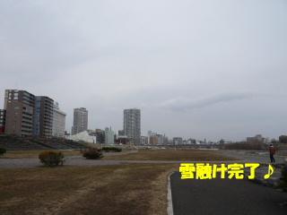 2008_0403kawa0007b.jpg