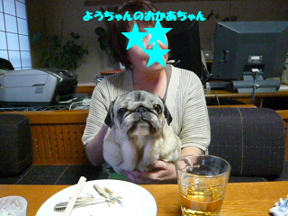 2008_0406we0007b.jpg