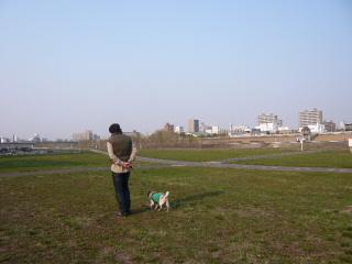 2008_0417po0008.jpg