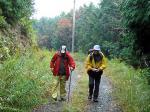 岩屋山林道を歩く