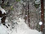 西野越から五家原岳への縦走路