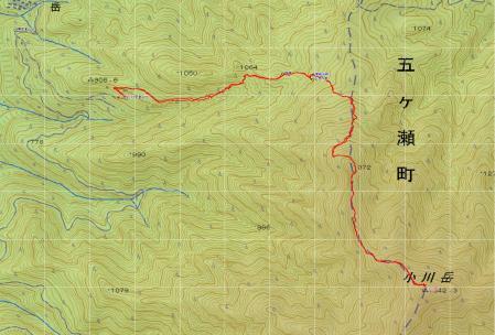 080811小川岳